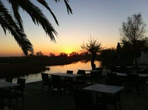 Hôtel - Restaurant - Spa - 4 étoiles en Camargue